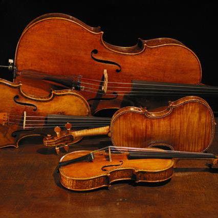 """Archi dell'Orchestra del Teatro """"F. Cilea"""""""